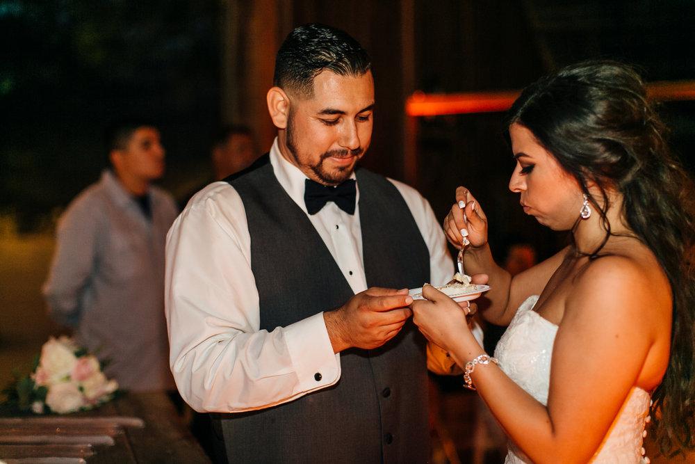 Diaz Wedding, 2017 (346 of 370).jpg