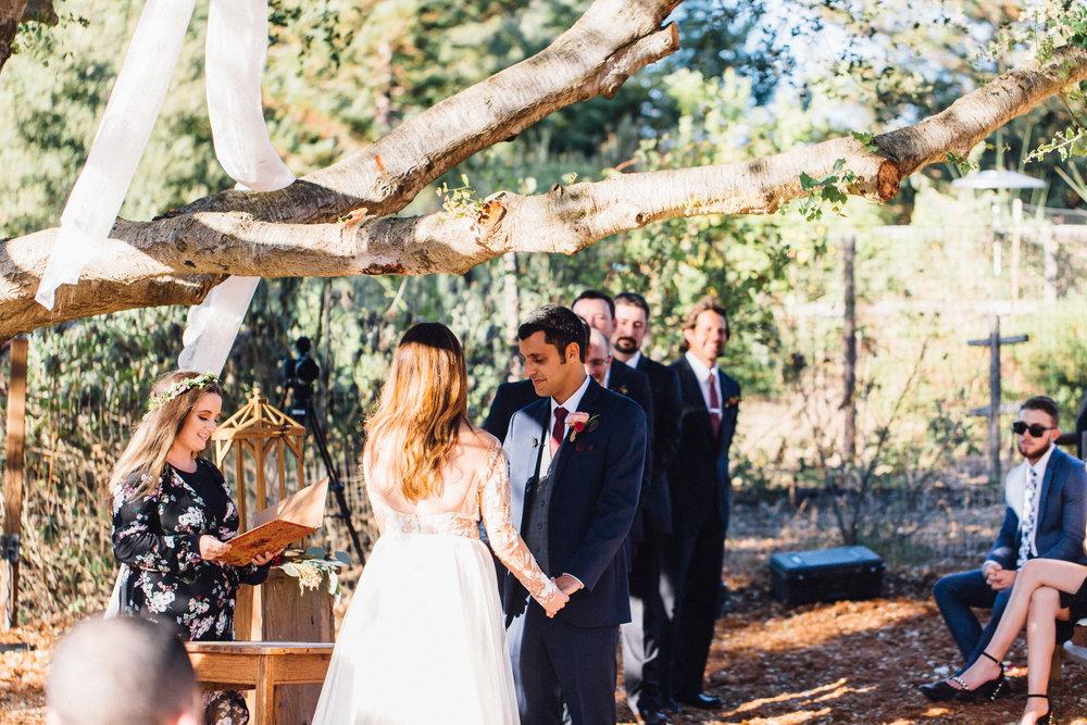 Gazipura Wedding, 2017 (267 of 501).jpg