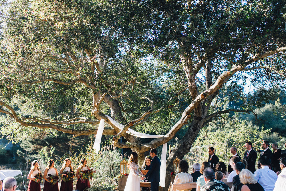 Gazipura Wedding, 2017 (282 of 501).jpg