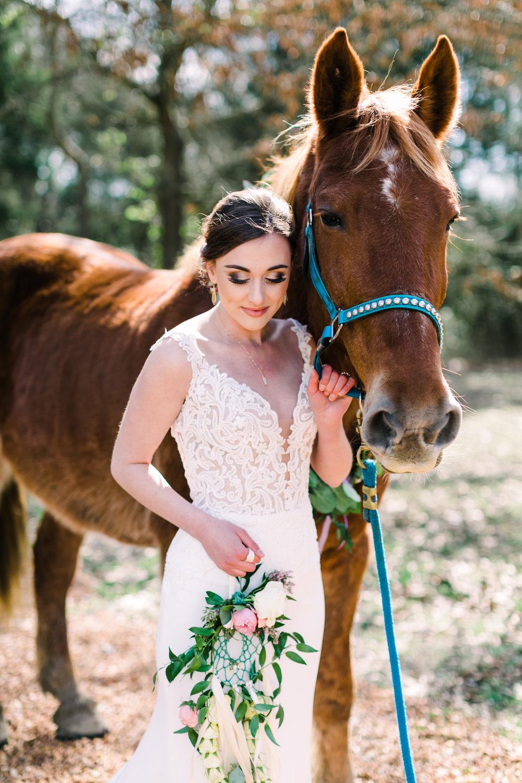 romantic+valentines+day+wedding+horses (4 of 10).jpg