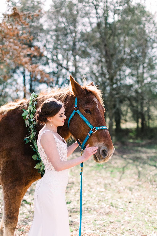romantic+valentines+day+wedding+horses (7 of 10).jpg