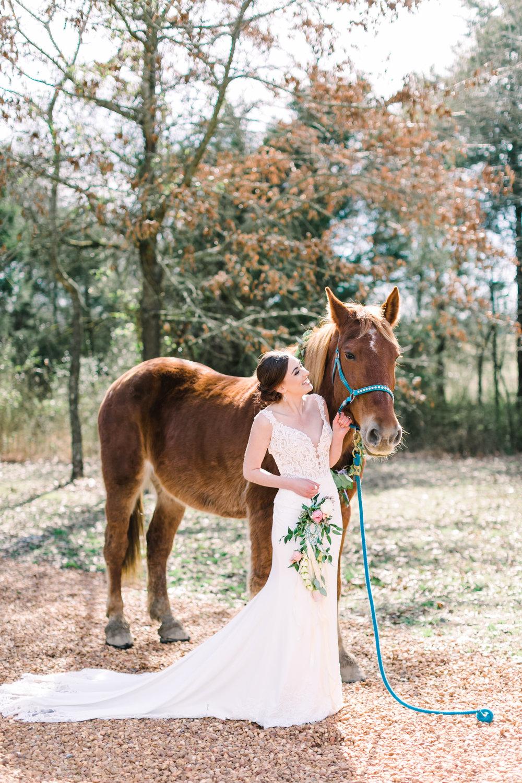 romantic+valentines+day+wedding+horses (5 of 10).jpg