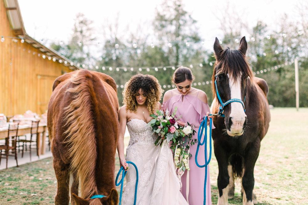 romantic+valentines+day+wedding+horses+chapel (9 of 11).jpg