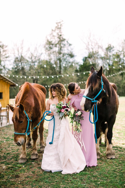 romantic+valentines+day+wedding+horses+chapel (7 of 11).jpg