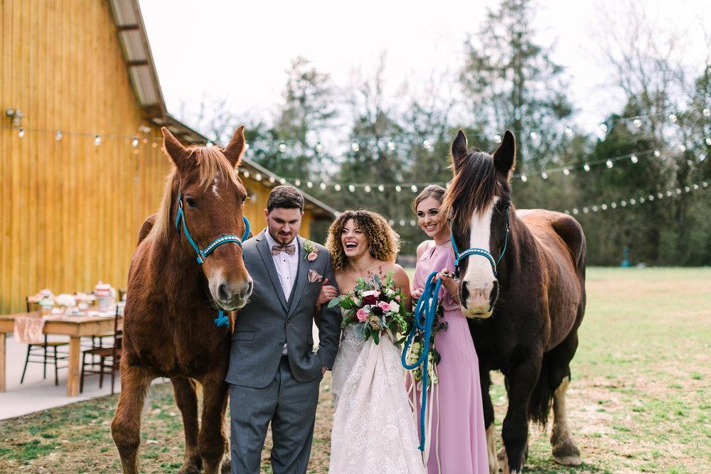 romantic+valentines+day+wedding+horses+chapel (11 of 11).jpg