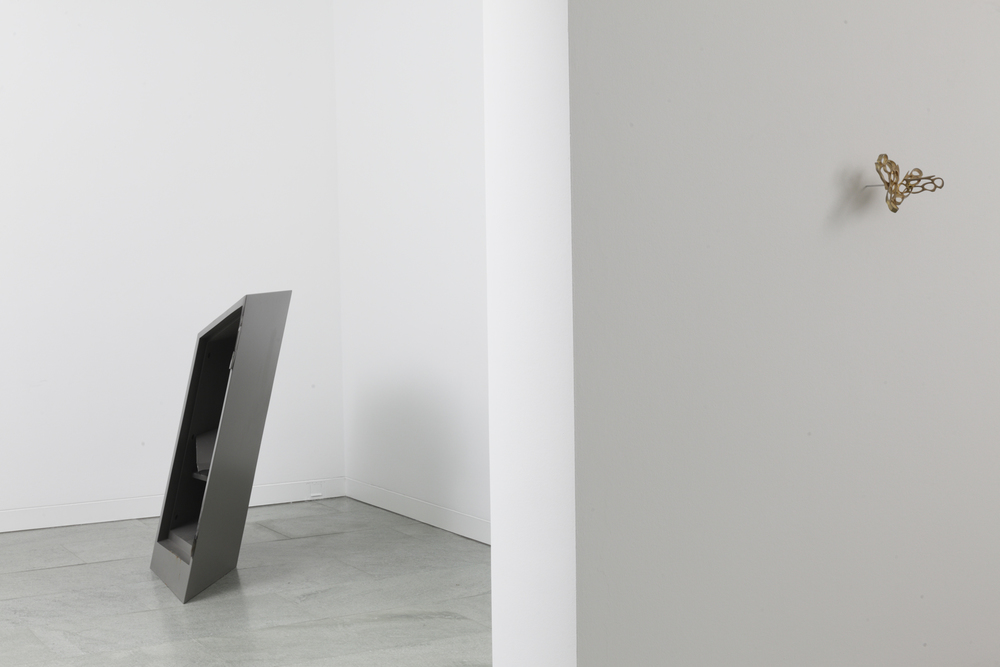 jamshot , installation view