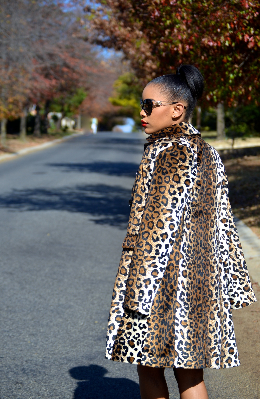 Kaylista_Leopard_17
