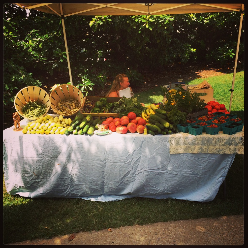 Vanderbilt Farmers market