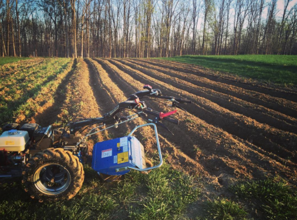 Our two-wheel tractor and raised beds.