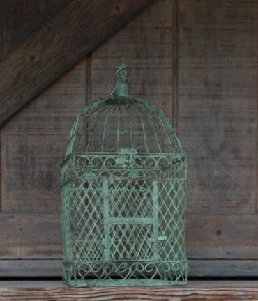 GREEN GIFT CARD BIRDCAGE - $15