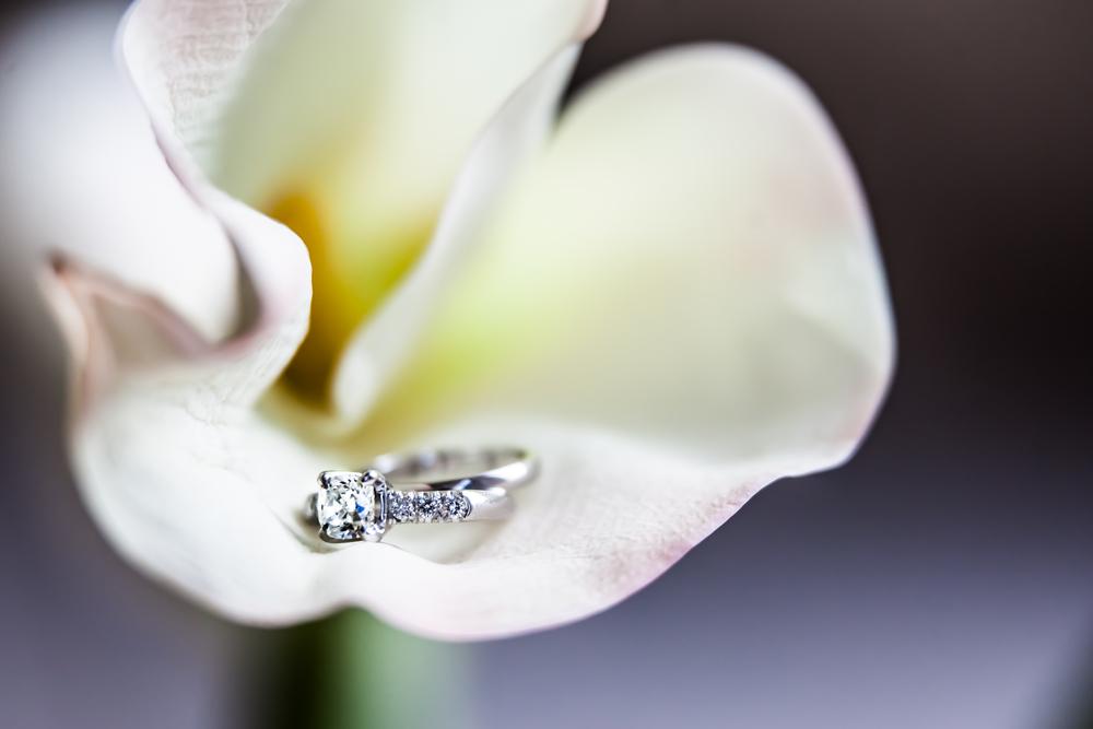 Wedding JJ BASHA | Piha studio photography, new york, events, -2.jpg