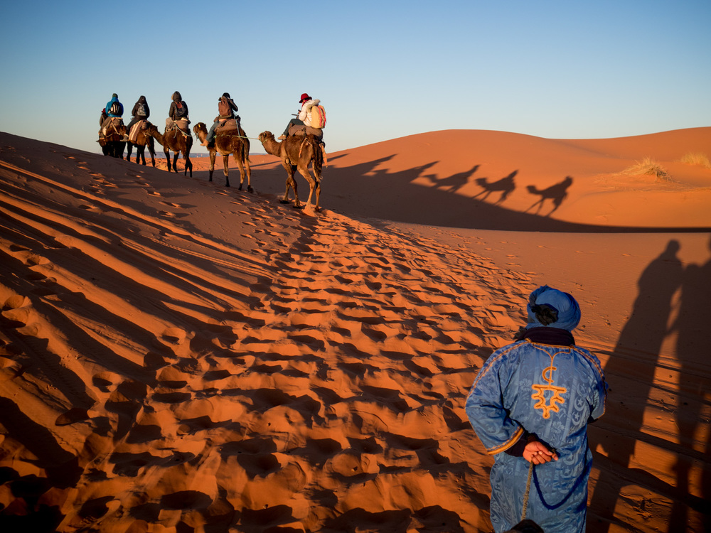 Sahara Desert, Morning Camel Trek