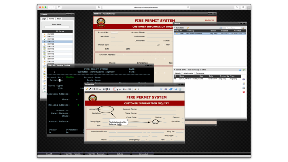 Defect entry user interface includes functionality to take browser screen shots without the need of a plugin or external program. Captured screens are attached to defects and can be tracked by the modernization lifecycle platform.