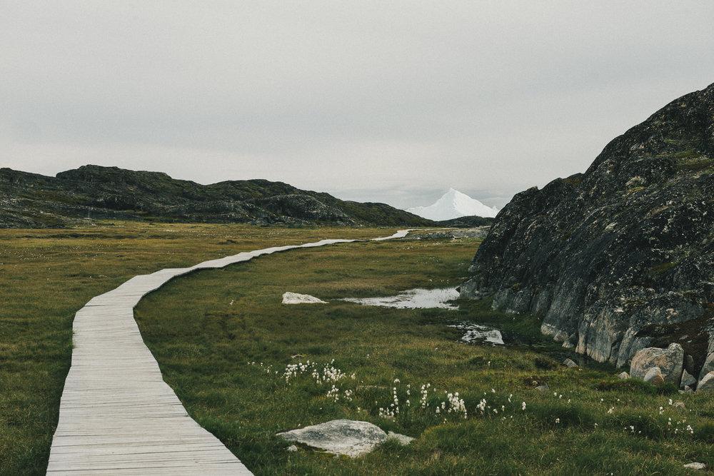 CindyBekkedam_Greenland_01.jpg