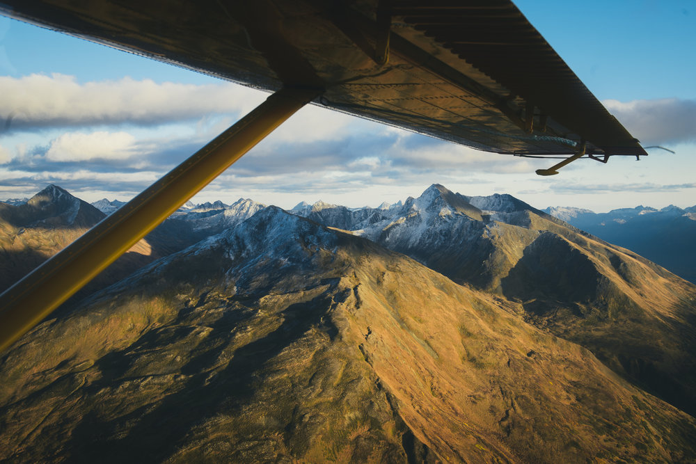 CindyBekkedam-Alaska-12.jpg