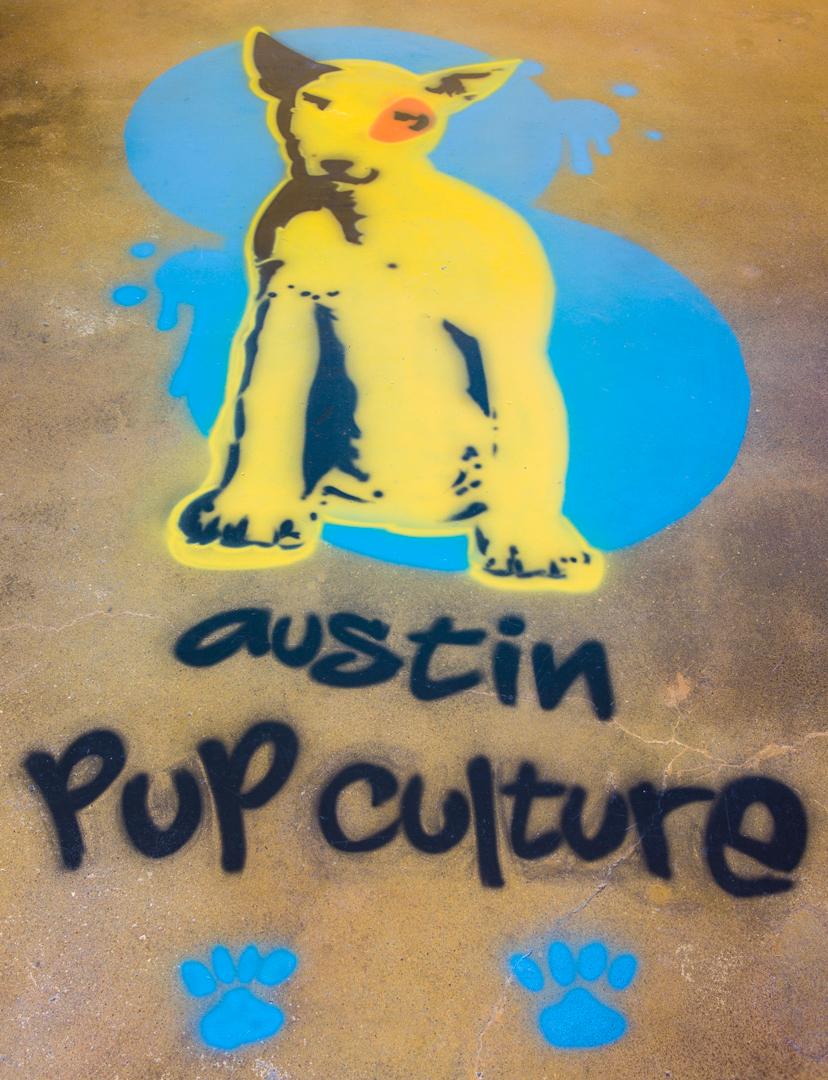 Gallery Austin Pup Culture