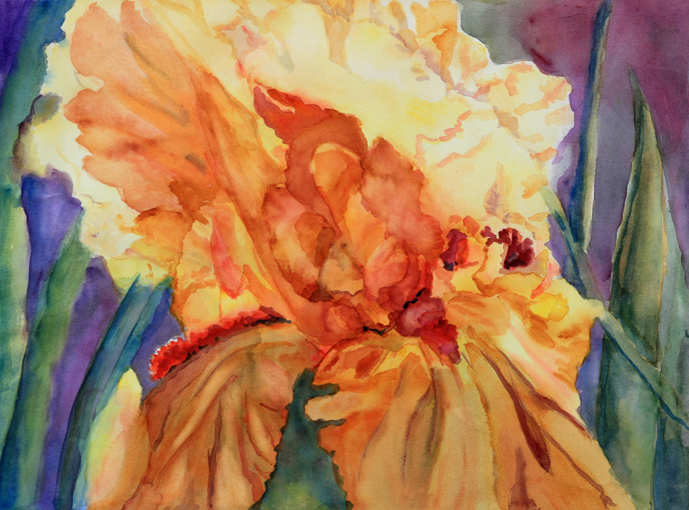 Diagonal Iris Yellow to Orange