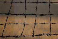 Barbed Wire 1 (Khmer Rouge Security Prison 21)  2012, 1 of 6 Museum Archival Digital C-Print 30 x 40 in.