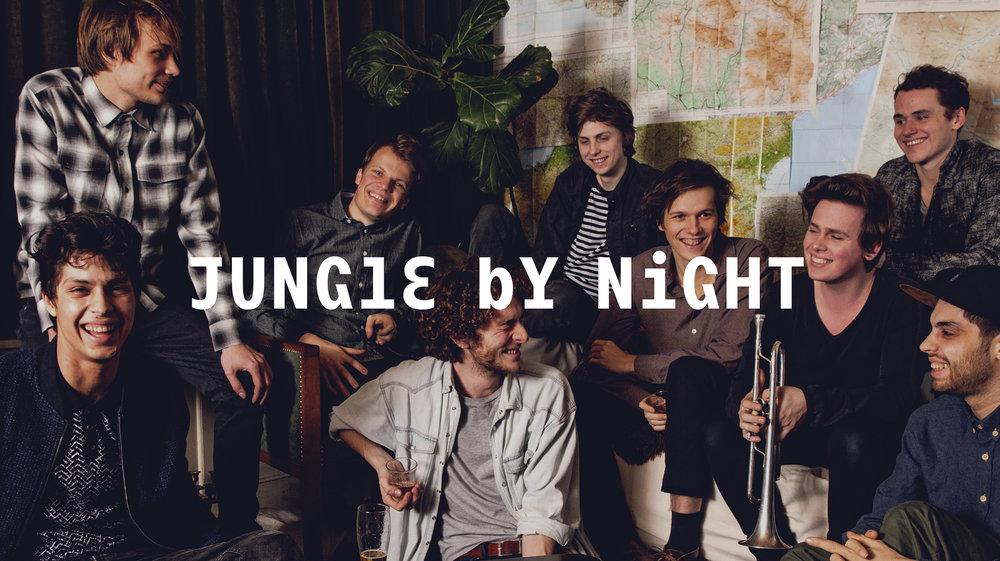 Jungle by night Web 2048 x1149.jpg