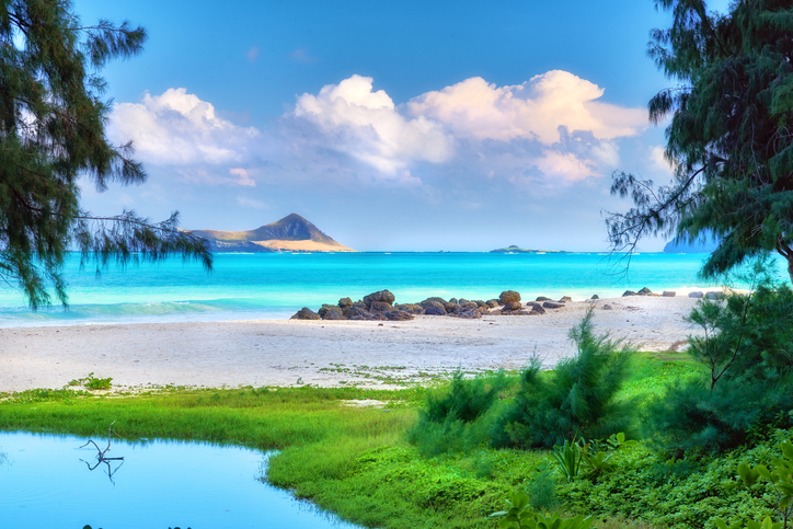 Hawaii 474914912.jpg