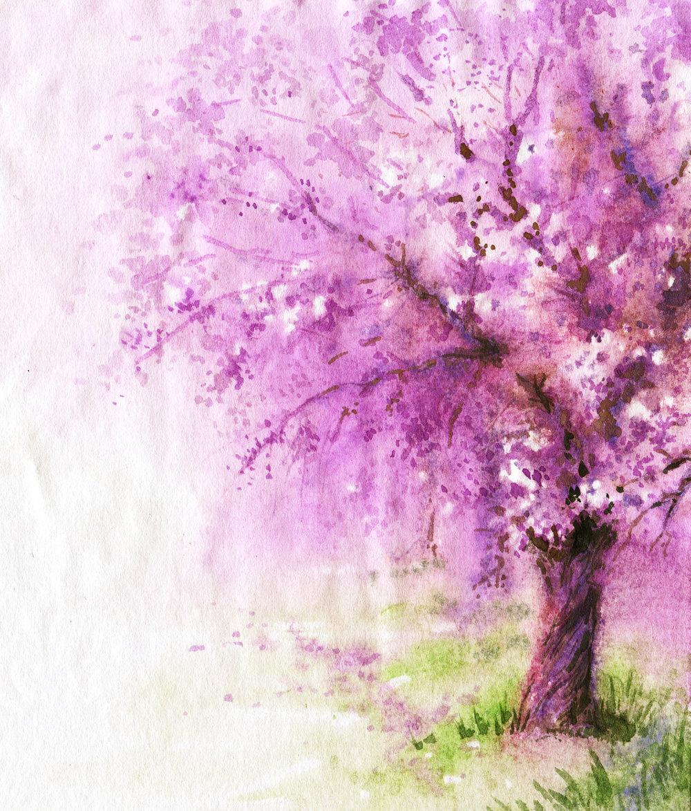 Tree Flowers -508255446.jpg