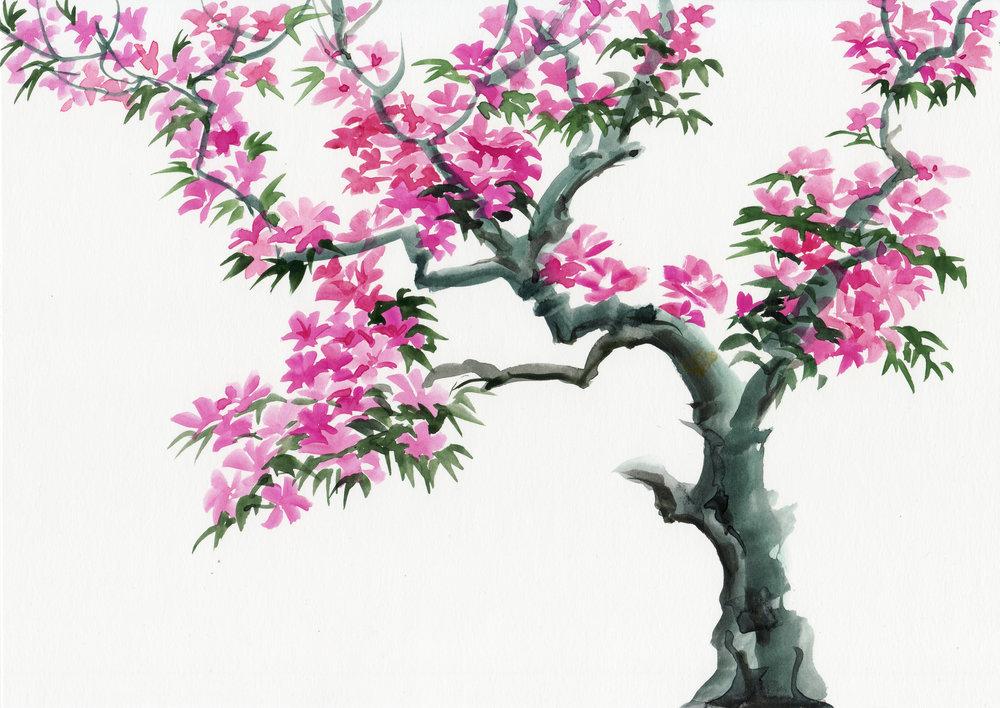 Tree Flowers -537679055.jpg