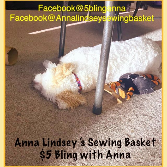 Friday Afternoon!  Grace found the perfect spot of sun and decided to take a nap!!! She's got the right idea!  #onlineshopping #paparazziaccessories #jewelry #homegoods #handmade #basslake #VisaliaMontessoripreschool Thepinesmarket