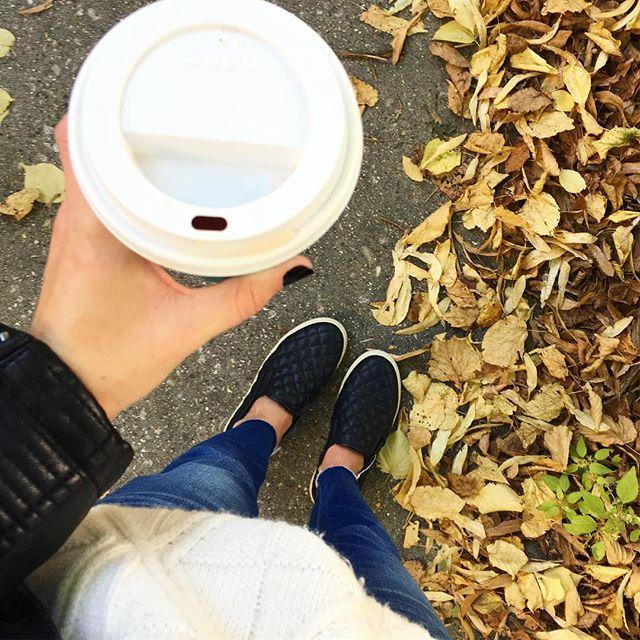 @davidstea with a side of Fall 🍁 #sweaterweather #davidstea #casualsaturday