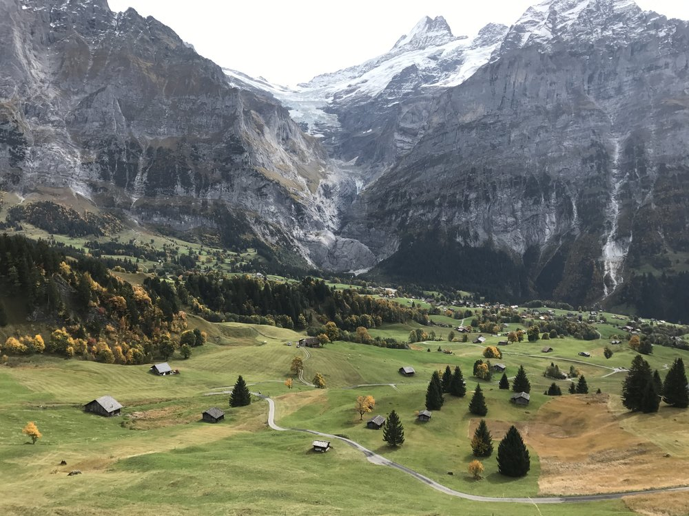 View of Grindelwald from Bort