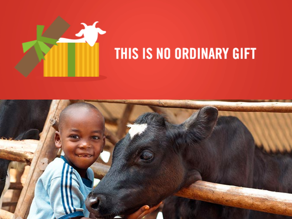Heifer Cow Gift