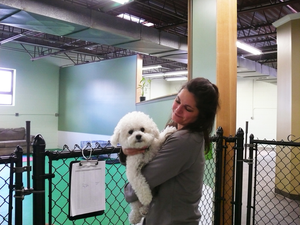 """My Lucky Dog"" owner, Melissa Punchak, with one of the pals"