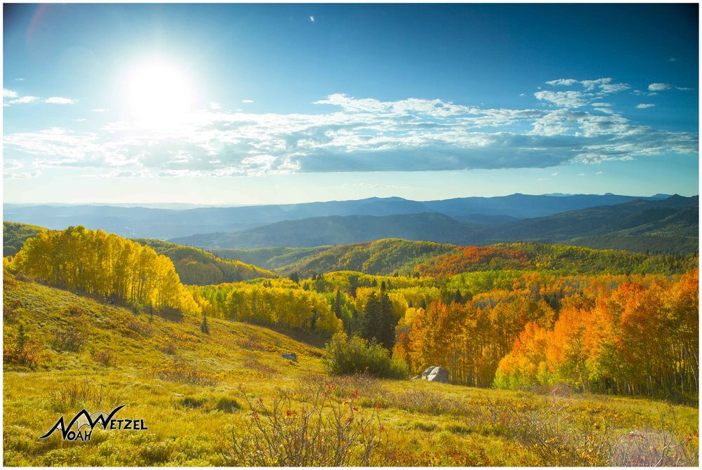 Beautiful fall colors grace the hillsides of Buffalo Pass outside Steamboat Springs, Colorado