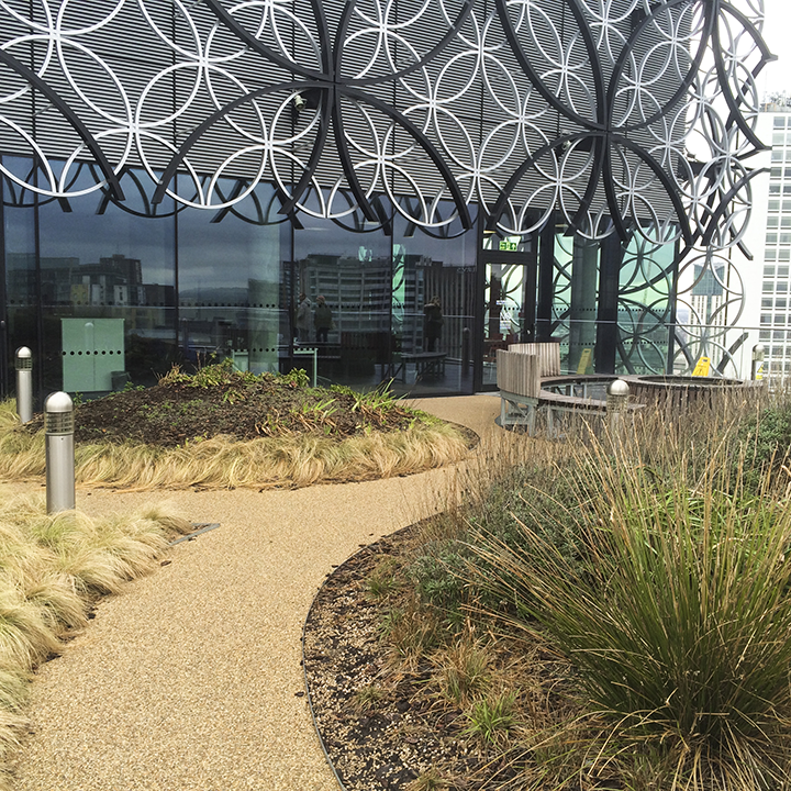 birmingham-library-roof-garden-landscape.png