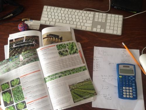 seedordering