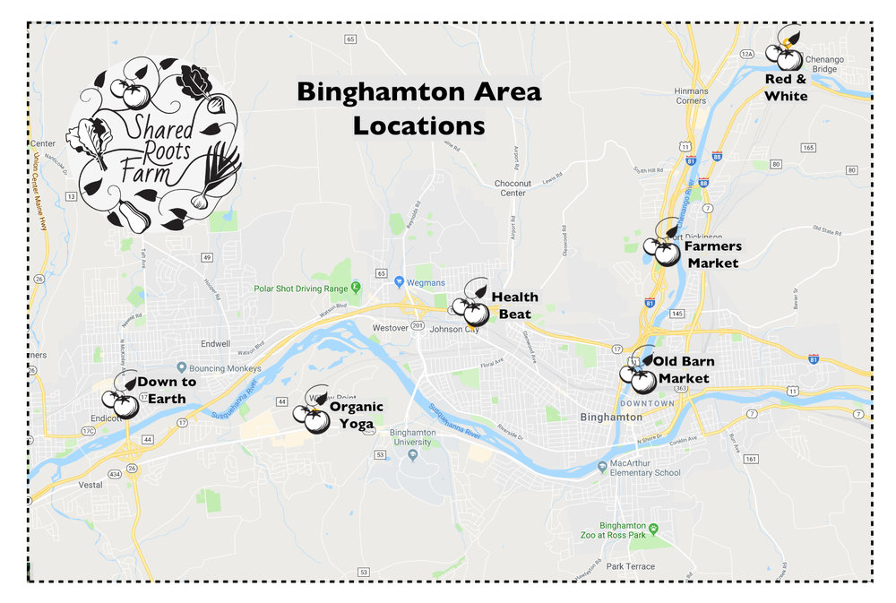 Binghamton Map