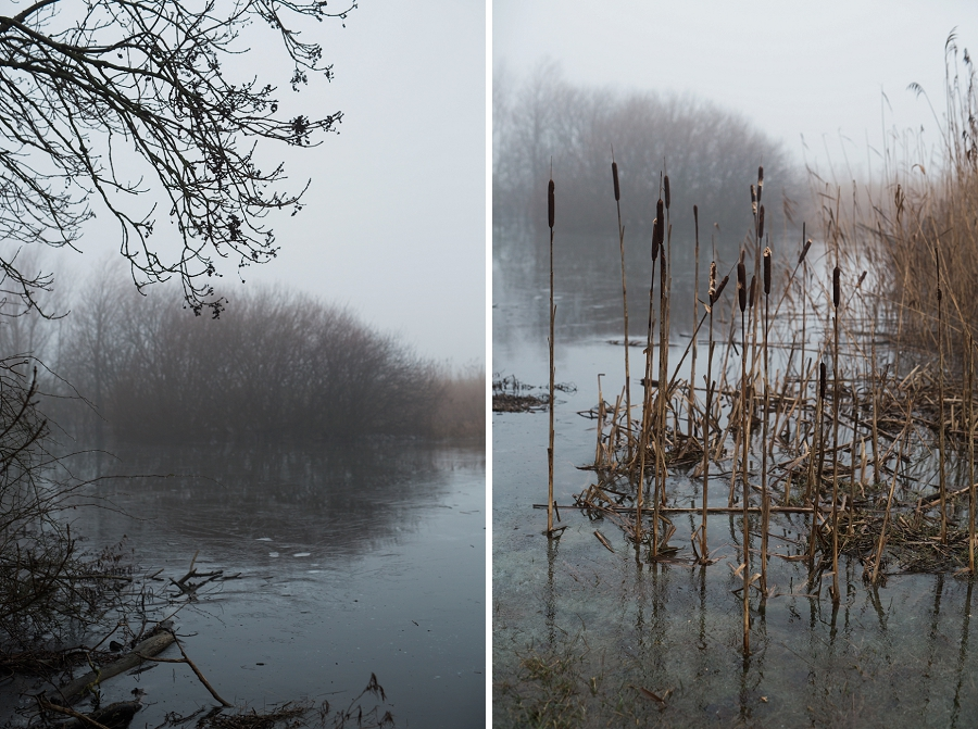 foggy-winter-days-sigridsminde_0218.jpg