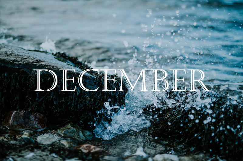 december-at-sigridsminde