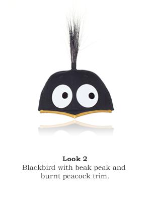 BirdCap_Look_2_piersatkinson.jpg