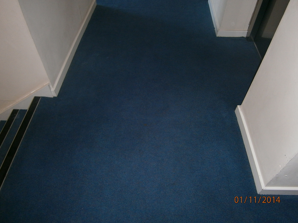 Hotel type carpet