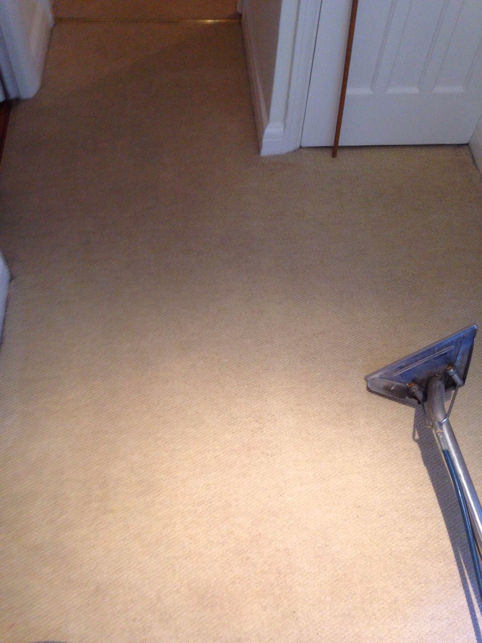 carpet steam cleaned hallway