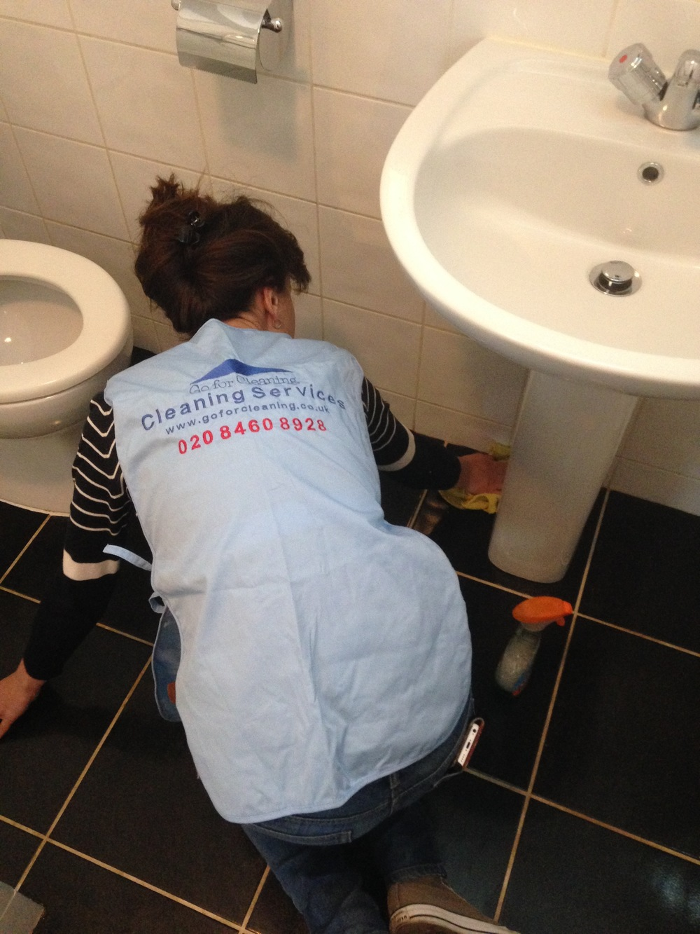 professional bathroom cleaner.jpg