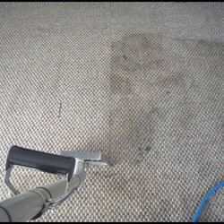 Carpet washing service.jpeg