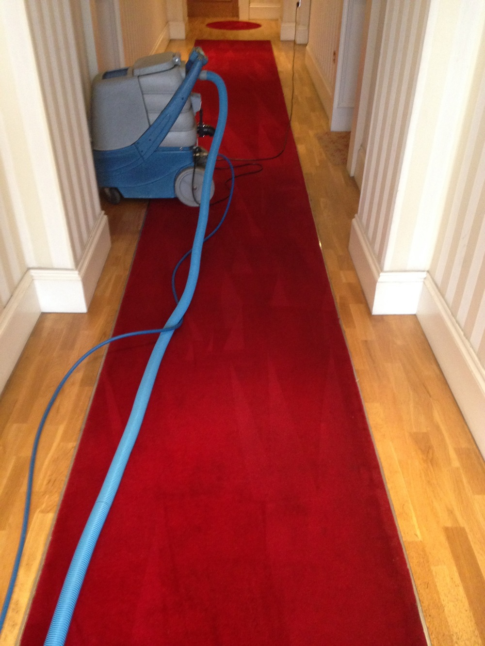 communal hallway carpet cleaning.jpg