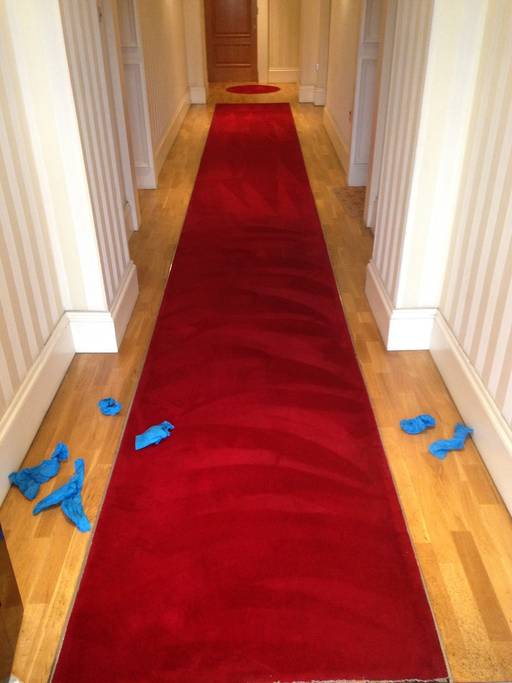 refreshed communal hallway carpets.jpg