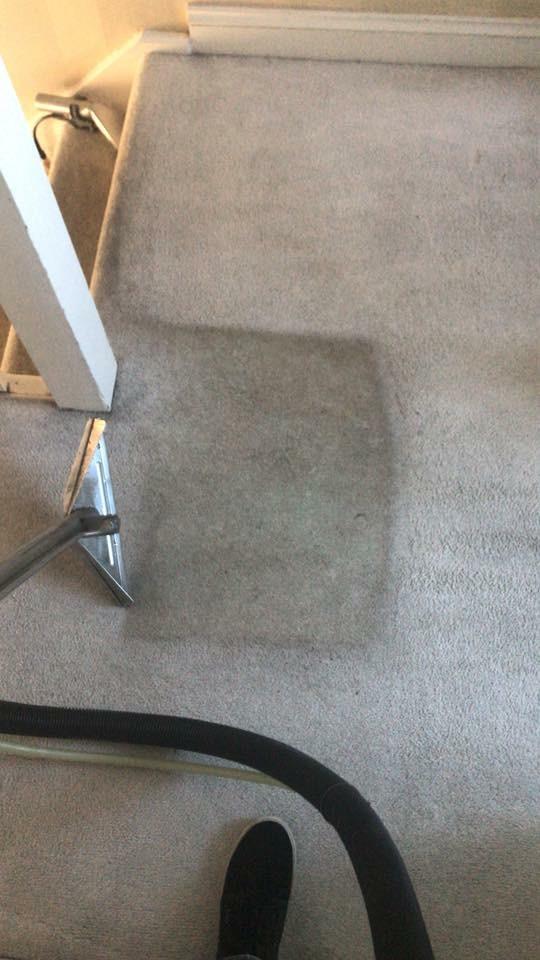 deep cleaning carpets in Kensigton, W8.jpg
