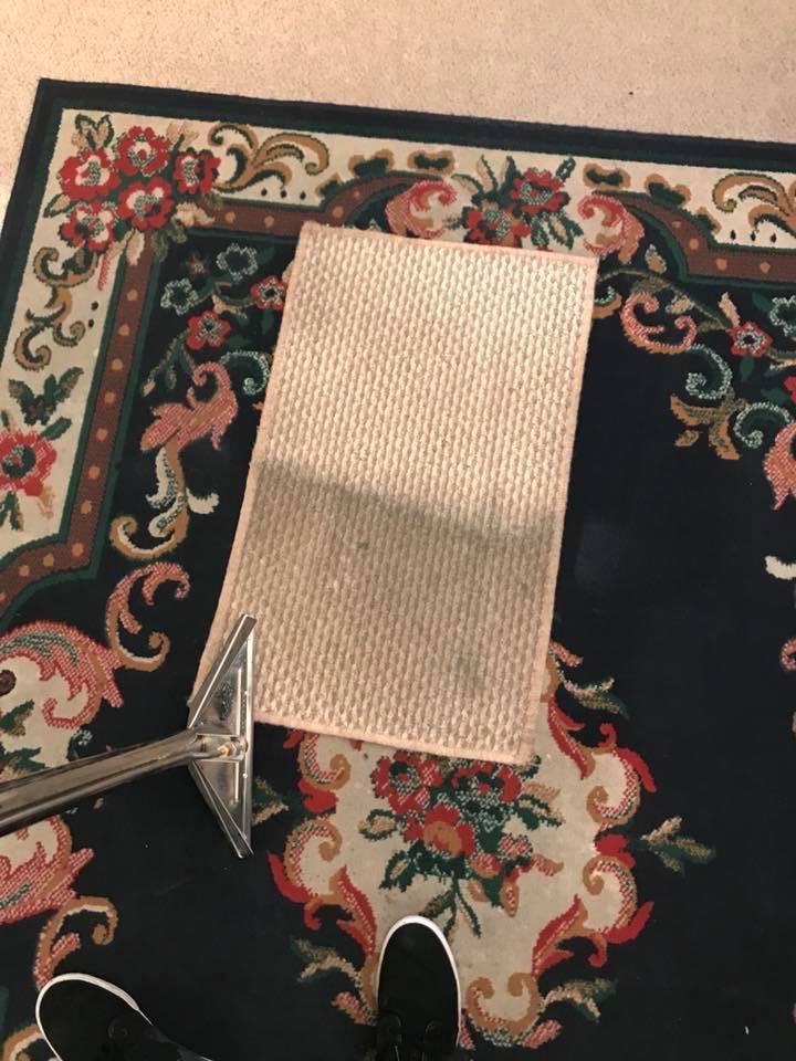rug cleaning service in Kensington.jpg