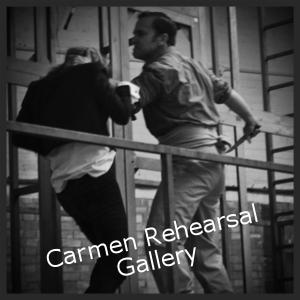 Carmen Rehearsal Gallery