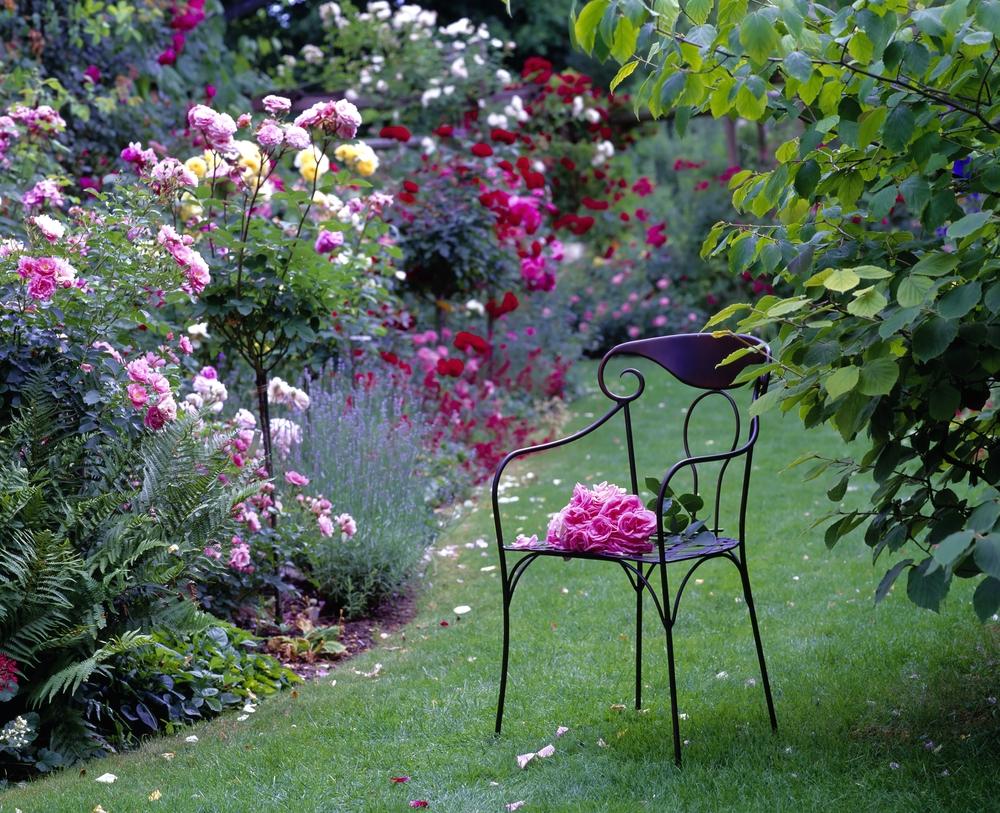 Image ID: 158744432 Copyright: Heller Joachim. Shutterstock.com