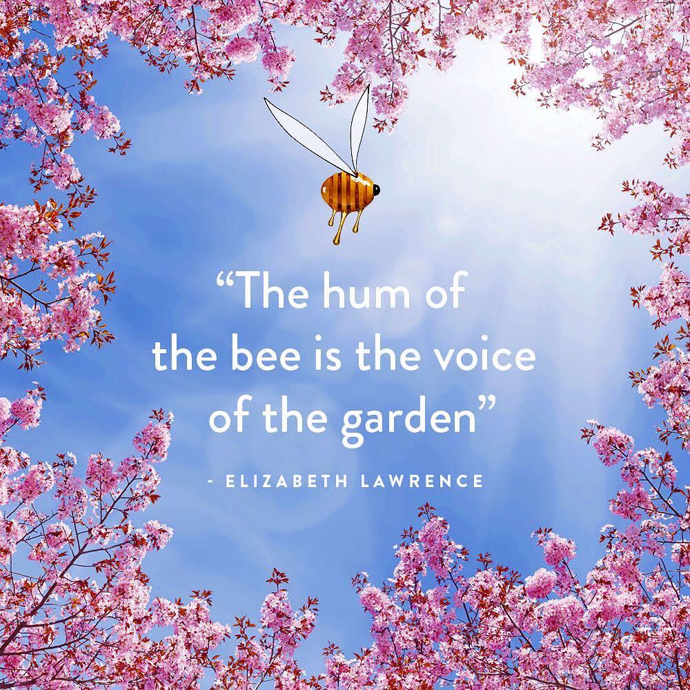 Blume_BeeLess_BeeKeeping.jpg