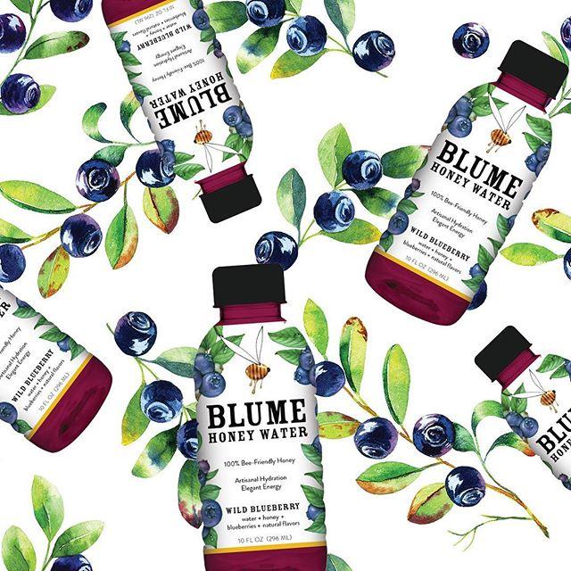 Blume_Wild_Blueberry.jpg